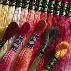 Хлопковое мулине DMC Color Variations